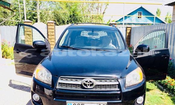 Buy Used Toyota RAV4 Black Car in Almaty in Almati
