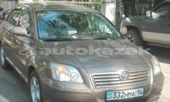 Buy Used Toyota Avensis Brown Car in Pavlodar in Pavlodar
