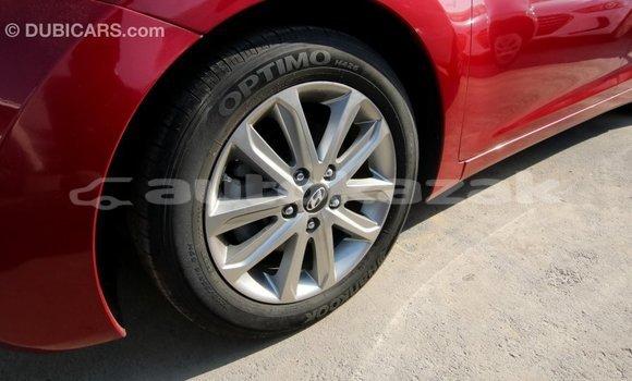 Buy Import Hyundai Elantra Red Car in Import - Dubai in Akmecet