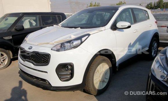 Buy Import Kia Sportage White Car in Import - Dubai in Akmecet