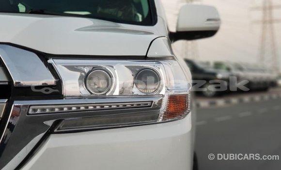 Buy Import Toyota Land Cruiser White Car in Import - Dubai in Akmecet