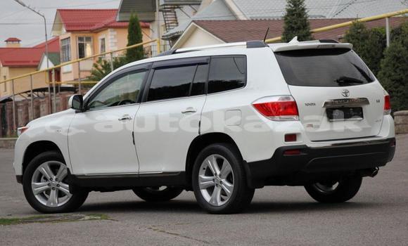 Buy Used Toyota Highlander White Car in Almaty in Almati